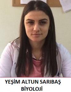 yesim